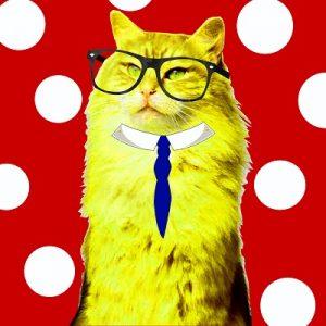 ¿Quién es el gato emprendedor?